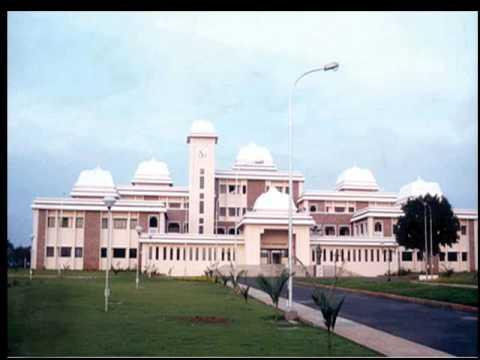 punjabi university patiala result ba 1st year