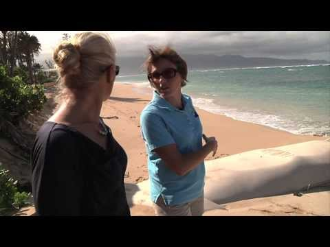 Beach Erosion Online