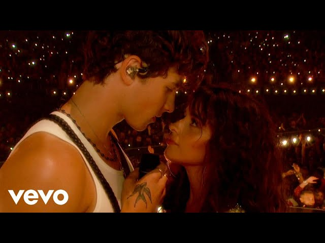 Shawn Mendes, Camila Cabello - Señorita (Live From The MTV VMAs / 2019)