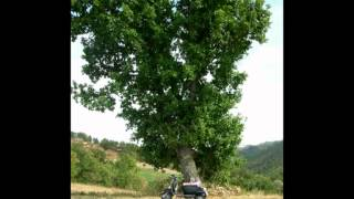 Lambretta di Matteucci Giuseppe