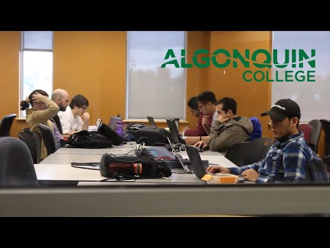 How Algonquin College students will be impacted by the college strike