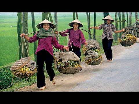 Download Descubrir el Mundo - Vietnam