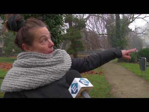 Ik teken voor 80: de mening van De Bothoven (TV Enschede)