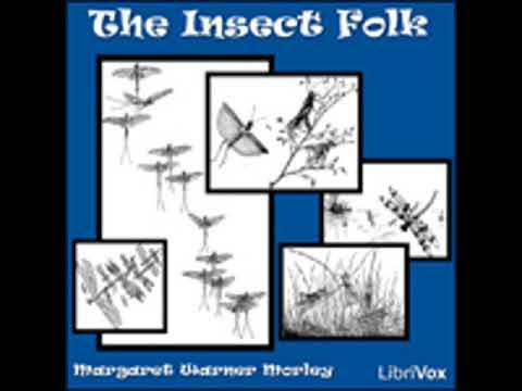 THE INSECT FOLK by Margaret Warner Morley FULL AUDIOBOOK | Best Audiobooks