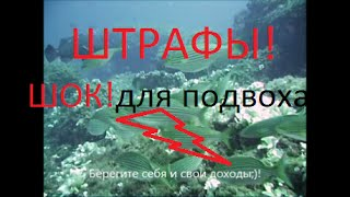 Штрафы в подводной охоте