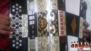 Picame Tarantula acordeon
