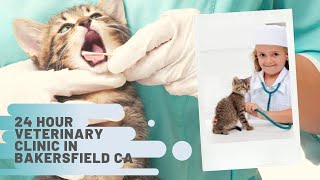 How to find 24 hour Veterinary Clinic in Bakersfield?   Best Veterinary Clinics Bakersfield CA, USA