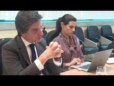 Depoimento de Fernando Luiz Ayres Santos Reis (ex-presidente da Odebrecht Ambiental) - INQ 4445