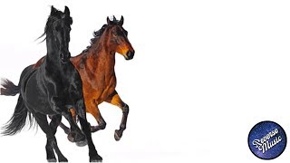 Lil Nas X - Old Town Road (feat. Billy Ray Cyrus) [Remix] (REVERSE)