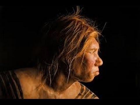 4 million years ago of human