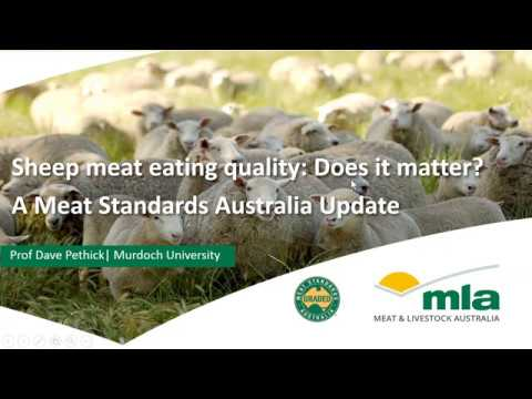Sheep meat eating quality: an MSA industry update