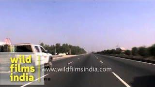 Dudu to Jaipur driving video, Rajasthan