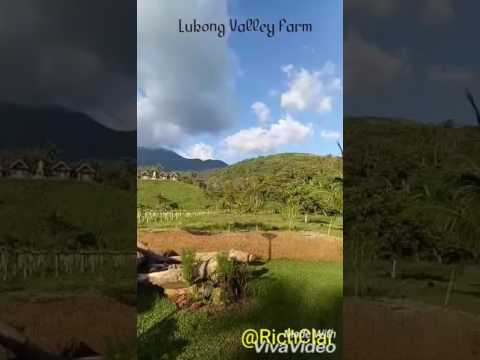 Lukong Valley Farm at Sitio Lukong Brgy. Pinagdanlayan Dolores Quezon