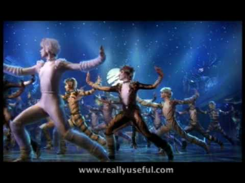 The Jellicle Ball