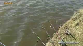 Рыбалка на карпа, на фидер 23 марта 2014