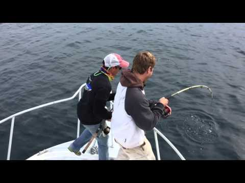Fishing Offshore In Charleston, SC