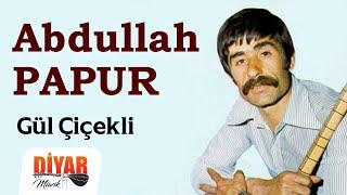 Abdullah Papur - Gül Çiçekli (Official Audio)
