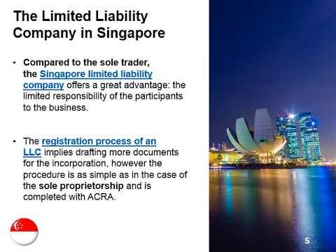 Start a Singapore LLC or Sole Proprietorship?