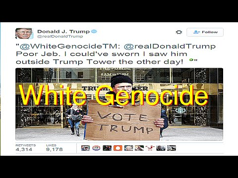 Donald Trump Retweets White Genocide Photo