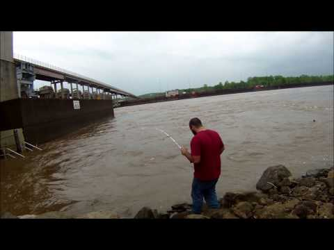 The Prehistoric Ohio River Paddlefish