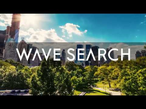 Wave Search | Corporate Overview  2017