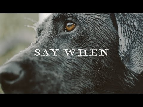 Sitka Films: Say When