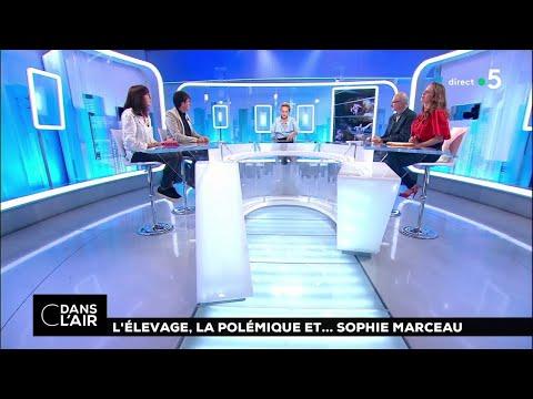L'élevage, la polémique et... Sophie Marceau cdanslair 21.05.2018