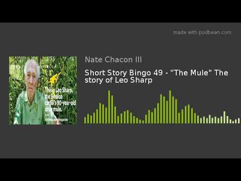 Short Story Bingo 49 -