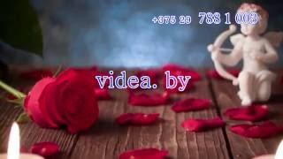 Видео на свадьбу в  Гродно от videa.by