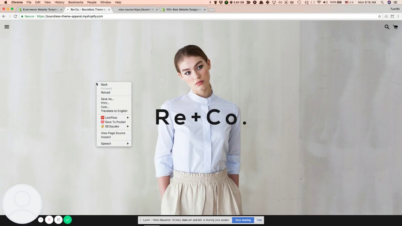 [Tutorial] How to find what is Shopify theme is used on store?