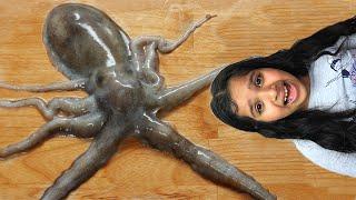 شفا خافت من الاخطبوط !!  Shfa Mukbang Octopus Pollicipes mitella