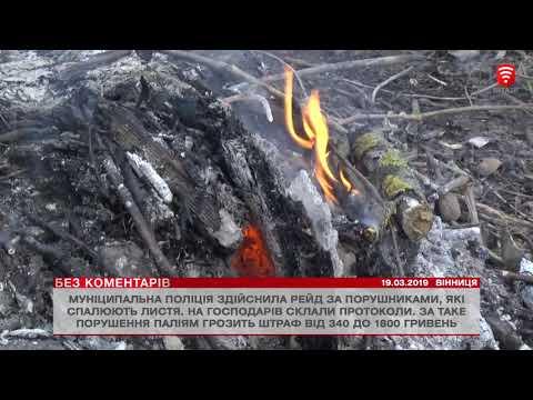 Телеканал ВІТА - БЕЗ КОМЕНТАРІВ: Телеканал ВІТА - БЕЗ КОМЕНТАРІВ 2019-03-19_2