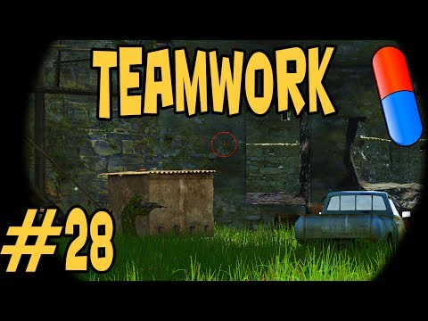 DAYZ LINGOR #28 - Perfect Team ⌂ [HD] Let's Play Dayz Together