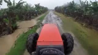 Farm work 2016