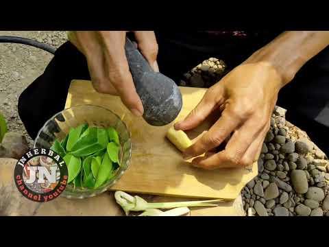 cara-membuat-obat-herbal-untuk-sesak-nafas