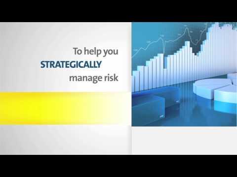 Portfolio Risk Manager for DNBi - Overview
