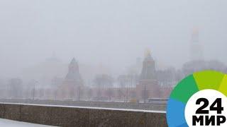 Капризы марта: Москву терзает снегопад, а Петербург – шторм и гололед - МИР 24