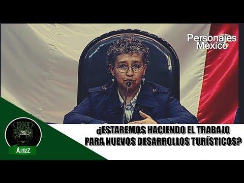 Foro sobre el Tren Maya. Aspectos Sociales.  Dra. Patricia Ramírez Bastida