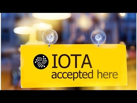 IOTA Cofounder is Optimistic for the Cryptocurrency's Future Amid Global Expansion