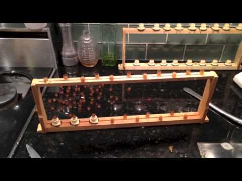 DC Honeybees TV Making Queens With Queen Rearing Kit, 2nd Try
