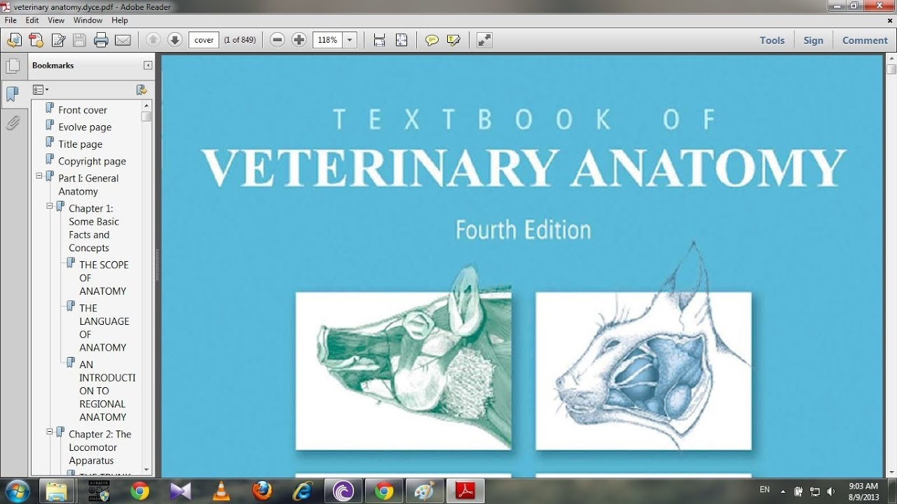 Textbook of veterinary anatomy by dyce as ae - YouTube
