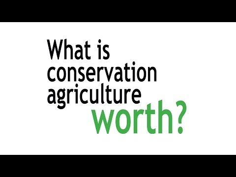 The Economic and Ecological Benefits of Ag Conservation Systems
