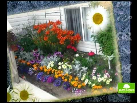 видео: Урок 4 - Цветник в саду ч-1 - Ландшафтный дизайн