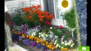 Урок 4 - Цветник в саду ч-1 - Ландшафтный дизайн