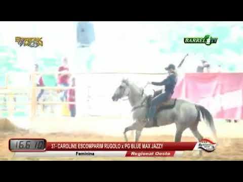 Cavalo da Semana - PG BLUE MAX JAZZY