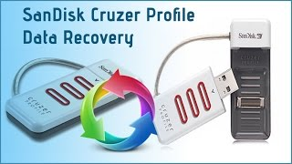 Recover Formatted USB Drive Data: SanDisk Cruzer Profile Files Recovery