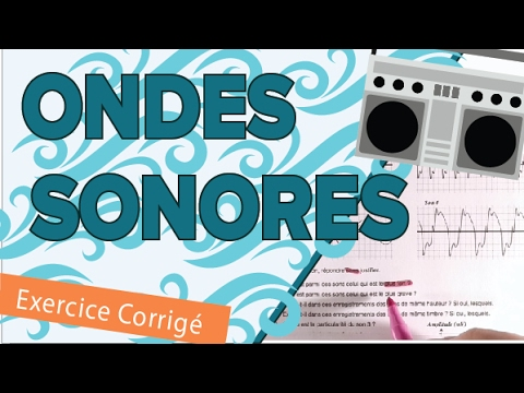 Ondes Mécaniques Sonores - Exercice Type Bac - Mathrix