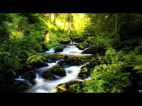 Achtergrondmuziek Piano - Rustige Achtergrondmuziek Piano - Rustige Achtergrondmuziek Studeren