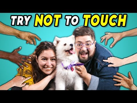 Try Not To Touch Challenge #2 (React)