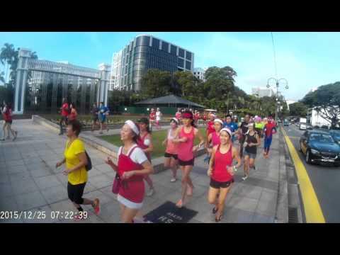 Costume Run (3rd Edition) - Running past Istana Park